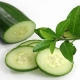 Cucumber Mint E-Liquid